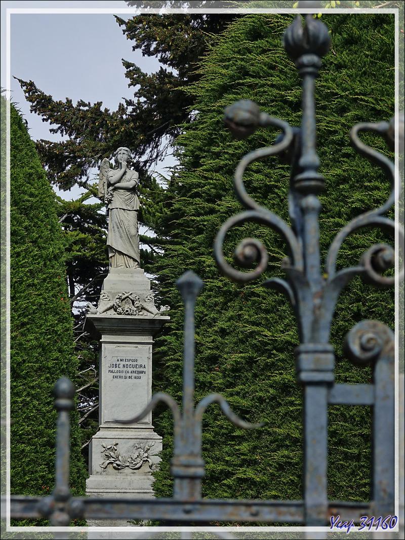 Et le lieu des dernières demeures des riches et des pauvres, des honnêtes et des malhonnêtes : le cimetière de Punta Arenas - Chili