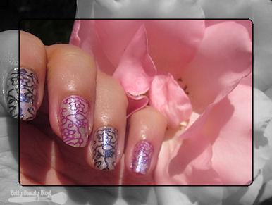 Jolies fleurs bicolores
