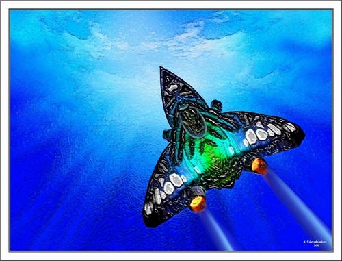 Le Jet Papillon