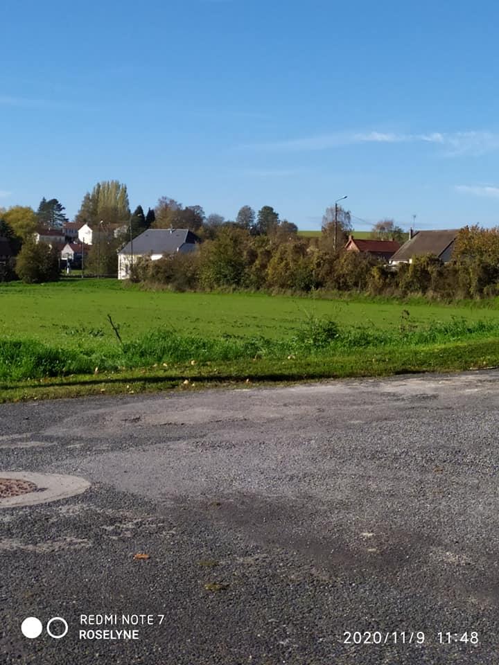 L'image contient peut-être: ciel, arbre, herbe, plein air et nature, texte qui dit 'REDMI REDMI-NOTE7 NOTE ROSELYNE 202.0/11/9 11:48'