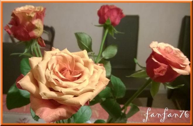 Dans les roses