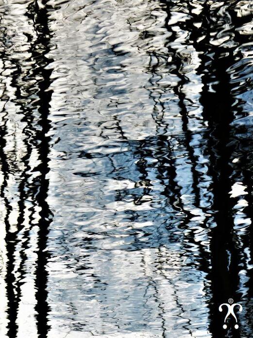 Reflets d'hiver