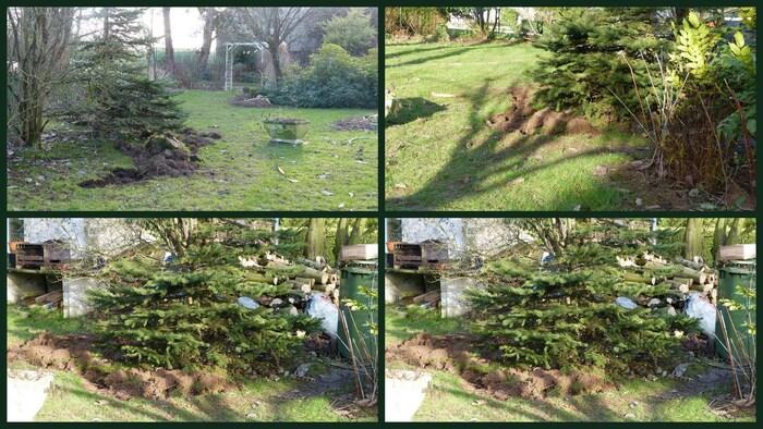 1er dimanche au jardin