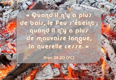 Proverbes 26 - Lecture et Prière
