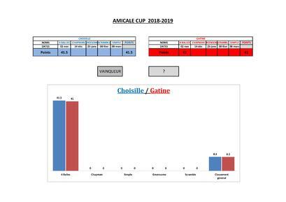 Amicale Cup Résultats