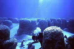Les stromatolites sont à l'origine de la vie