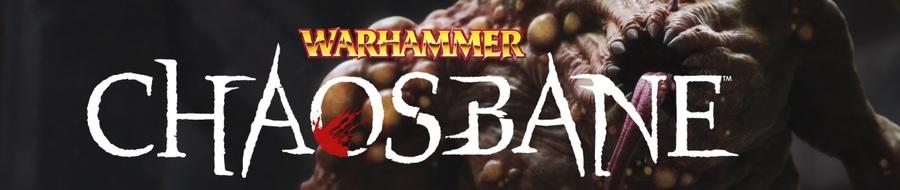 Vidéo : Warhammer : Chaosbane : Rise of Chaos*