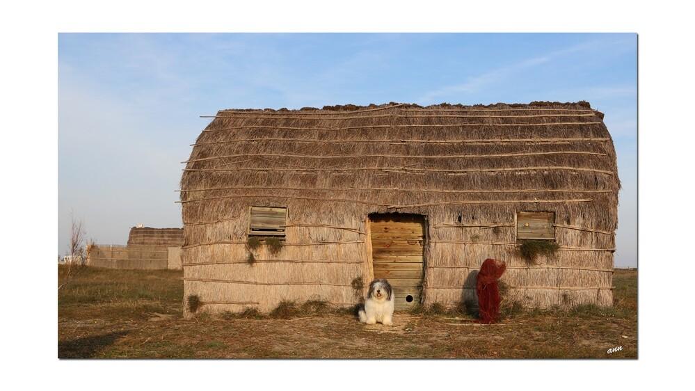Etang du Canet en Roussillon (ancienne maison de pêcheur)