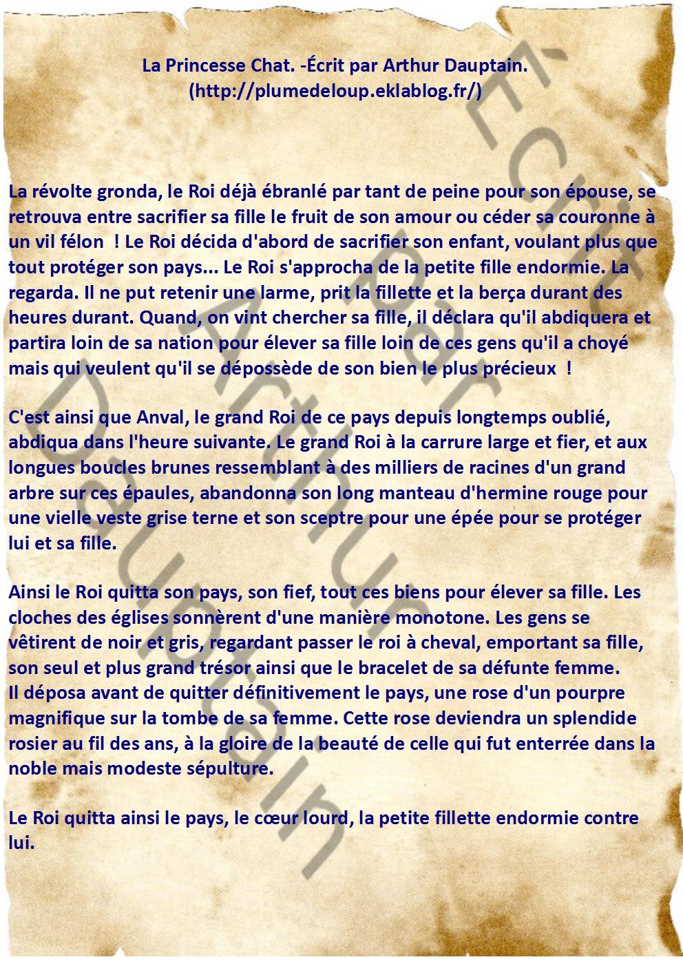 La Princesse Chat: Chapitre 1 : Pierre de Naissance (Nouvelle version)
