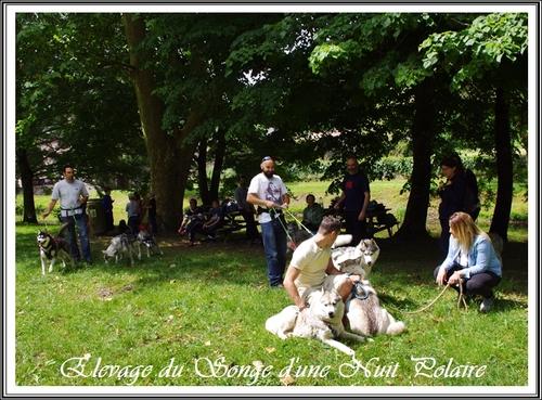 Rencontre du Songe d'une Nuit Polaire (4 juin 2017)