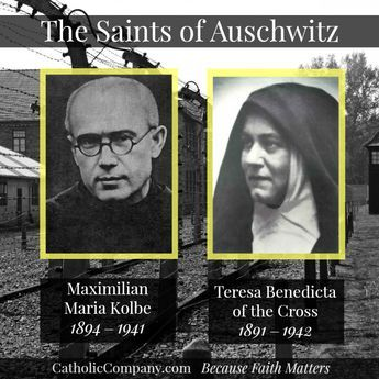 100+ Best St. Teresa Benedicta of the Cross images | benedicta, edith stein,  st edith stein
