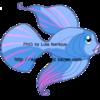 Poisson-bleu-et-rose