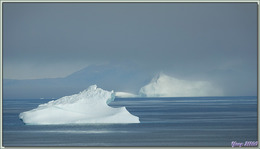 Observation d'icebergs, au loin, le long de la côte entre Kullorsuaq et Nuliarfik - Groenland