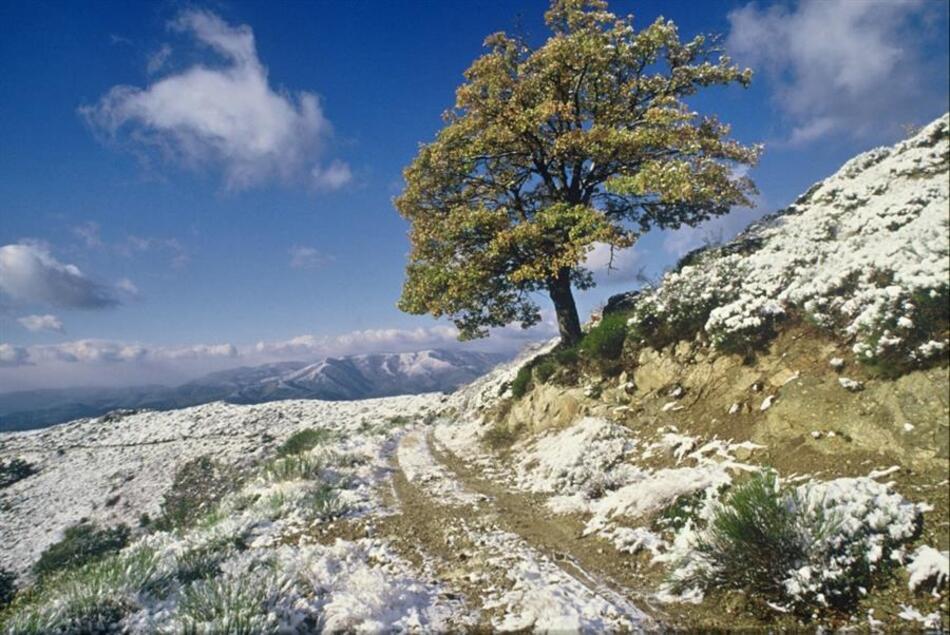 Sentier de la Serreyrède dans le parc national des Cévennes