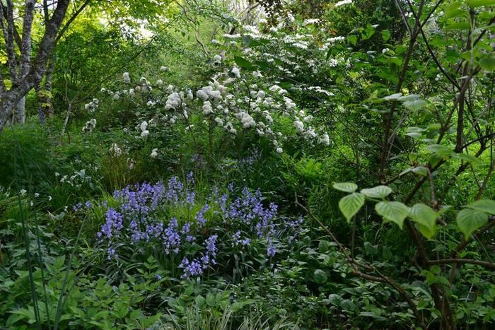 Le jardin préféré des Français (1/2) : Le Jardin de Liliane