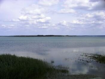 032-Lac du Der