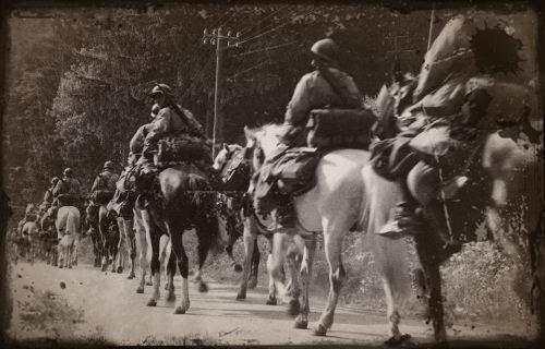 animaux abandonnes en 1940