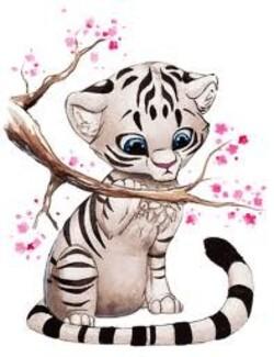 tigre blanc manga