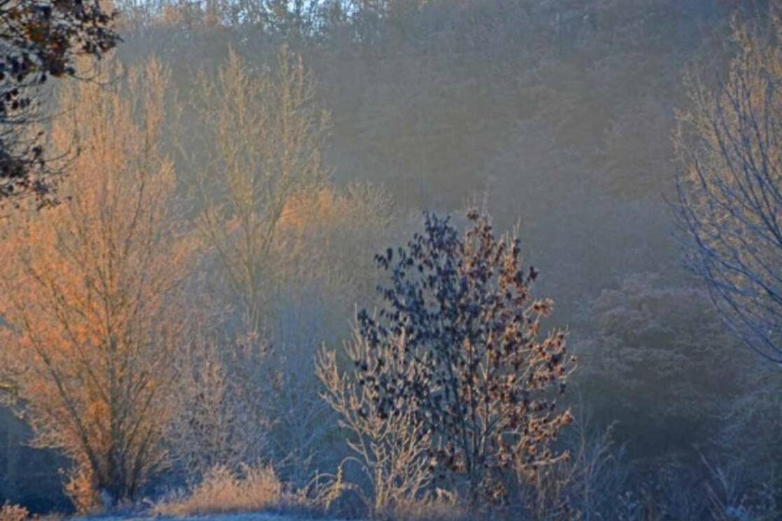 Givre-neige-6 3668