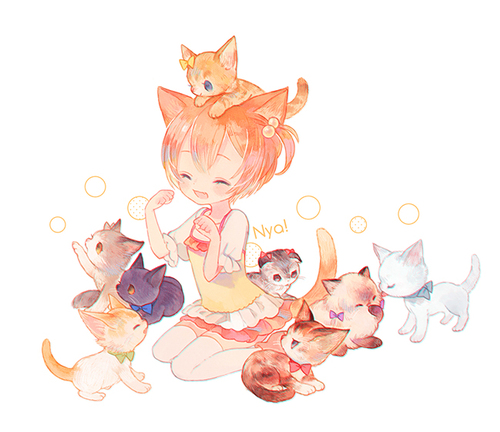 Collection Neko