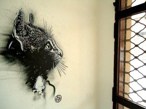 12 - Des chats sur les murs