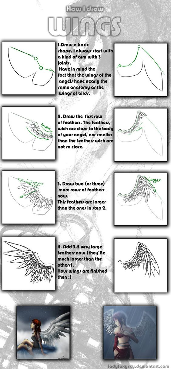 Wings tutorial ✤ || CHARACTER DESIGN REFERENCES https://www.facebook.com/CharacterDesignReferences: