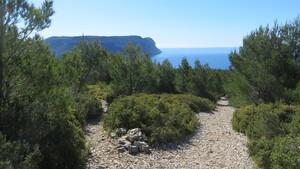 Pointe de l'ilot Aven des Marseillais