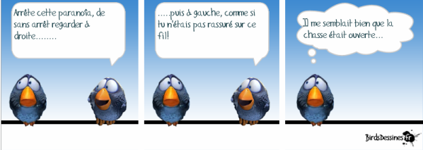 Birdsdessines-chasse.png