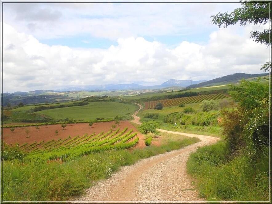 928 - Suite29 : -Notre Chemin vers St Jacques de Compostelle à travers ses anecdotes-