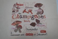 lili point: champignons