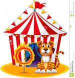 Mercredi 23 nomvembre 2016 : cirque