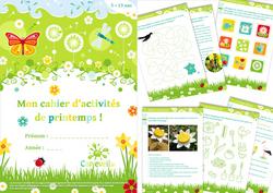 printemps, activités, jeux, cycle 2, Cp, ce1, DDM