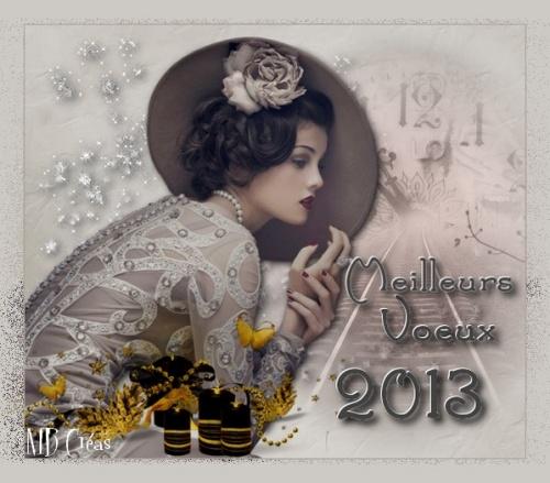 CARTES VOEUX  2013