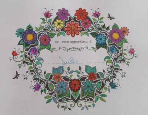 Mon premier dessin du livre Jardin Secret de Johanna Badford