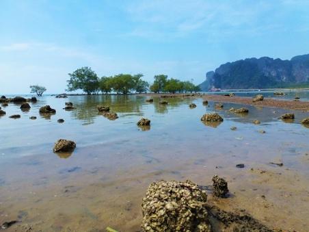 Plage de Krabi
