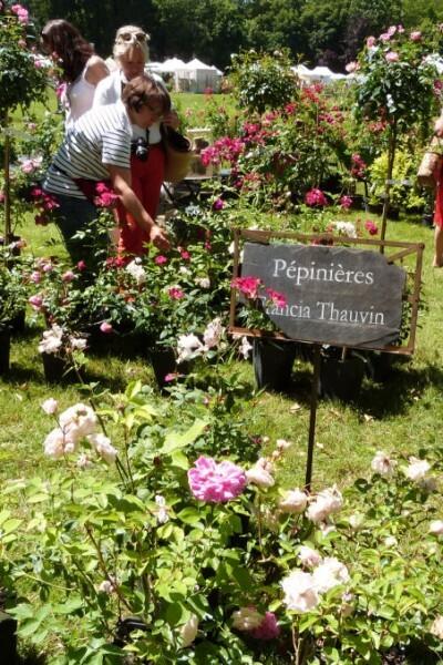 journées de la rose chaalis - juin 2014 - stand f-copie-1