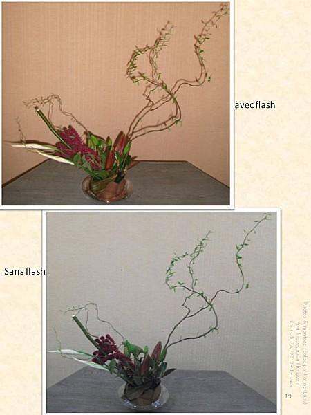 2012 04 03 ikebana (19)