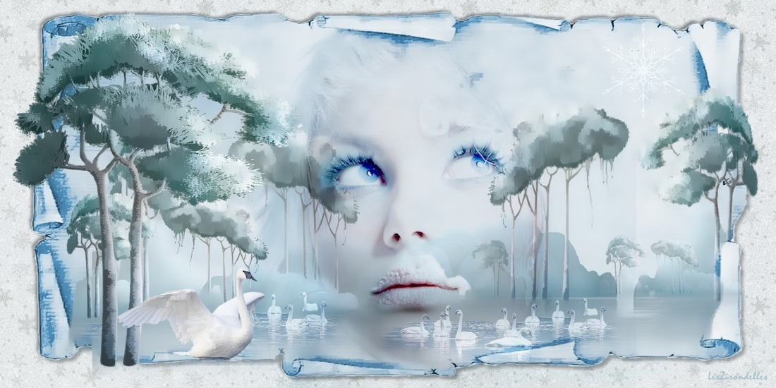 Grands fonds hiver bleu /Les cygnes dans la lande