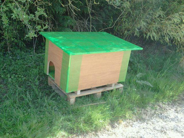 cabanes pour les chats d 39 ext rieur