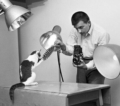 Des photographes et leur chat