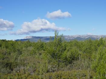 Au loin, la Sainte-Baume et le Pic de Bertagne