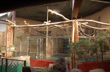Zoo Saarbrücken 2012 017