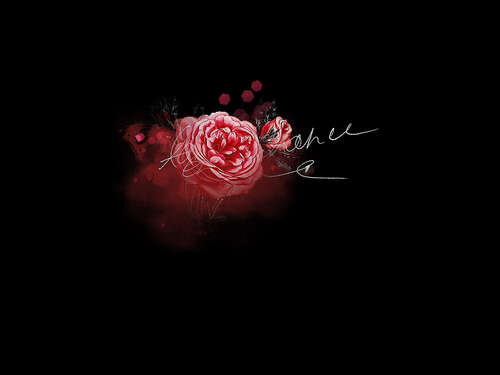 Ressource #1 - Rose