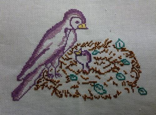 oiseaux-nid-2.jpg