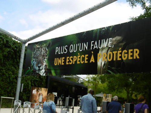 Au zoo de Vincennes