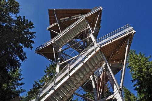 Mont BESSOU...et la tour...
