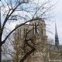 Paris - Fin d'hiver sur Notre-Dame