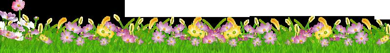 Plante-bande de fleurs
