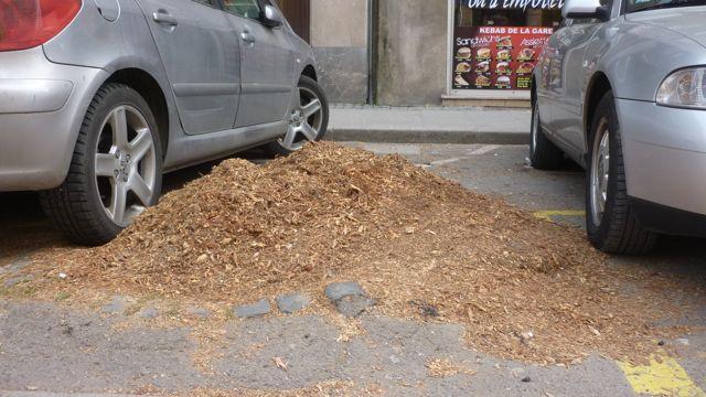 Les derniers arbres sont abattus pour la chaudière UEM