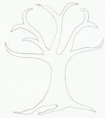Nature (arbres)